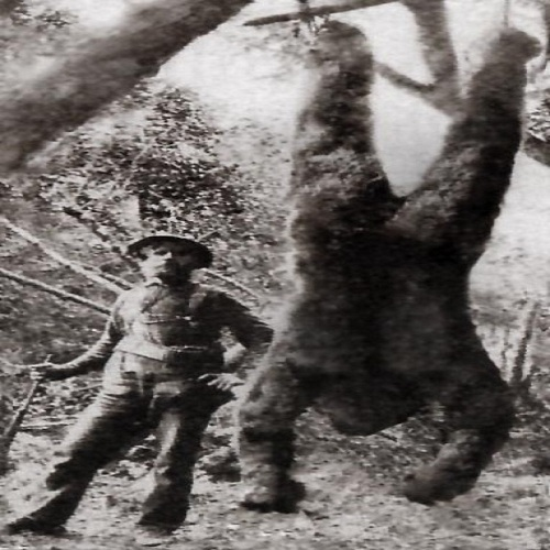 If I can't have Bigfoot, nobody can.