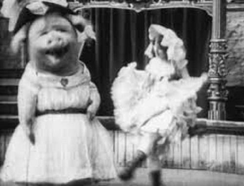 Dancing Pig 1907 Hog Wild: Phantom Pork...