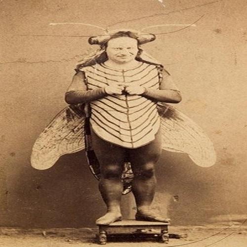 public_bee