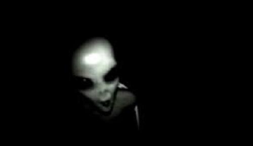 alien_predatory