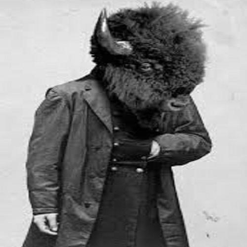 buffalo_buffalo