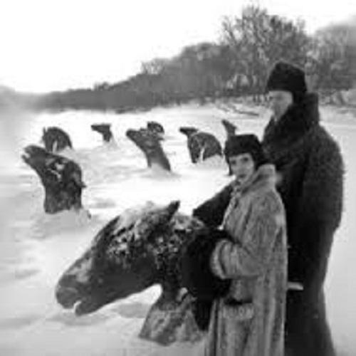 frozen_north