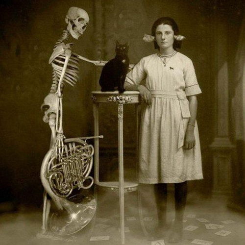 creepy_cat